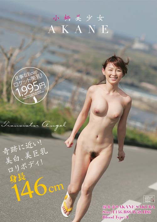 ALD590 | 小柄美少女 AKANE