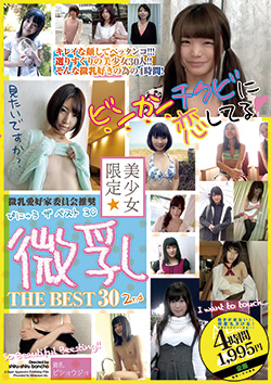 美少女限定 微乳 THE BEST 30 2nd